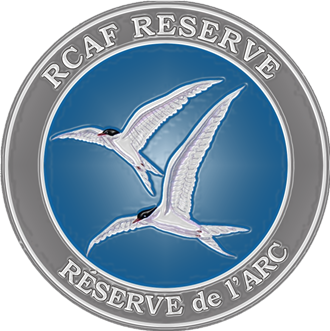Air Reserve badge