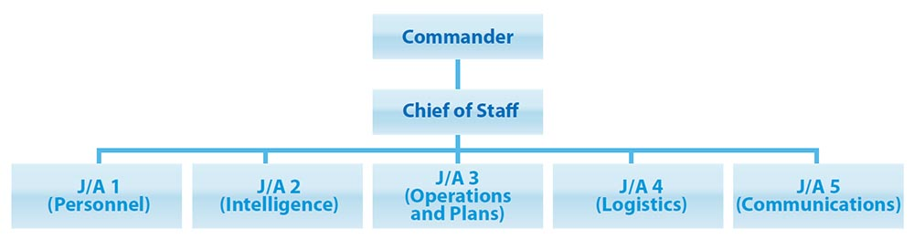 Figure 1 depicts the hierarchy of South American armed forces headquarters. At the top is the commander. Reporting directly under the commander is the chief of staff. Under the chief of staff are the five joint/air components: 1 (Personnel), 2 (Intelligence), 3 (Operations and Plans), 4 (Logistics), and 5 (Communications). End Figure 1.