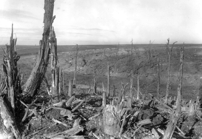 A view of the battlefield on the Western Front, near Beaumont Hamel, in France, reveals the absolute desolation resulting from a heavy-artillery battle. PHOTO: Q1523. Imperial War Museum, London, England.
