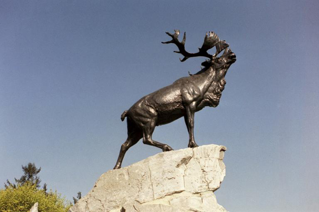 The caribou, emblem of the Royal Newfoundland Regiment, seems to call a challenge to the enemy 98 years after the First World War Battle of the Somme, in France. PHOTO: Veterans Affairs Canada