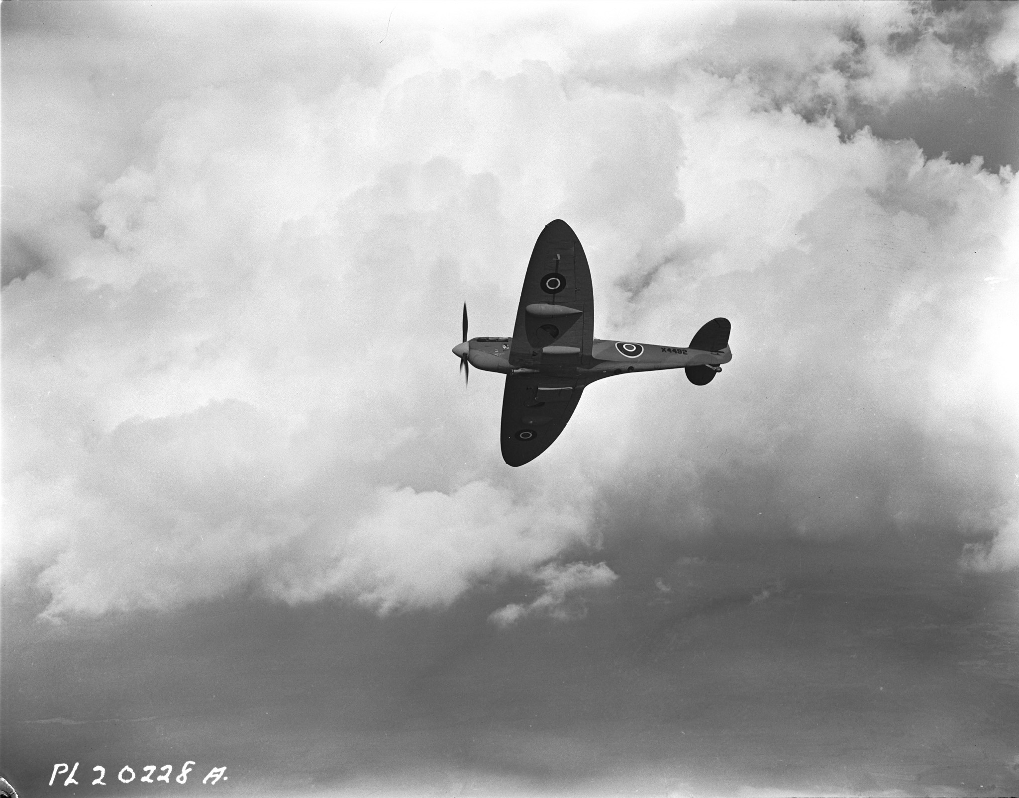 "A Spitfire in flight. ""Once in the air, however,"" said Flying Officer J. Stewart 'Stew' Young, ""she flew with grace, speed and beauty, and became my favourite aircraft by far.""  PHOTO: DND"
