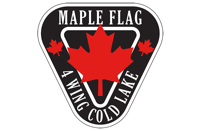 slide - A graphic of a black and white inverted triangle with a red maple leaf in the centre