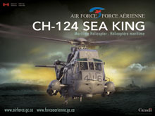 CH-124 Sea King - Front View
