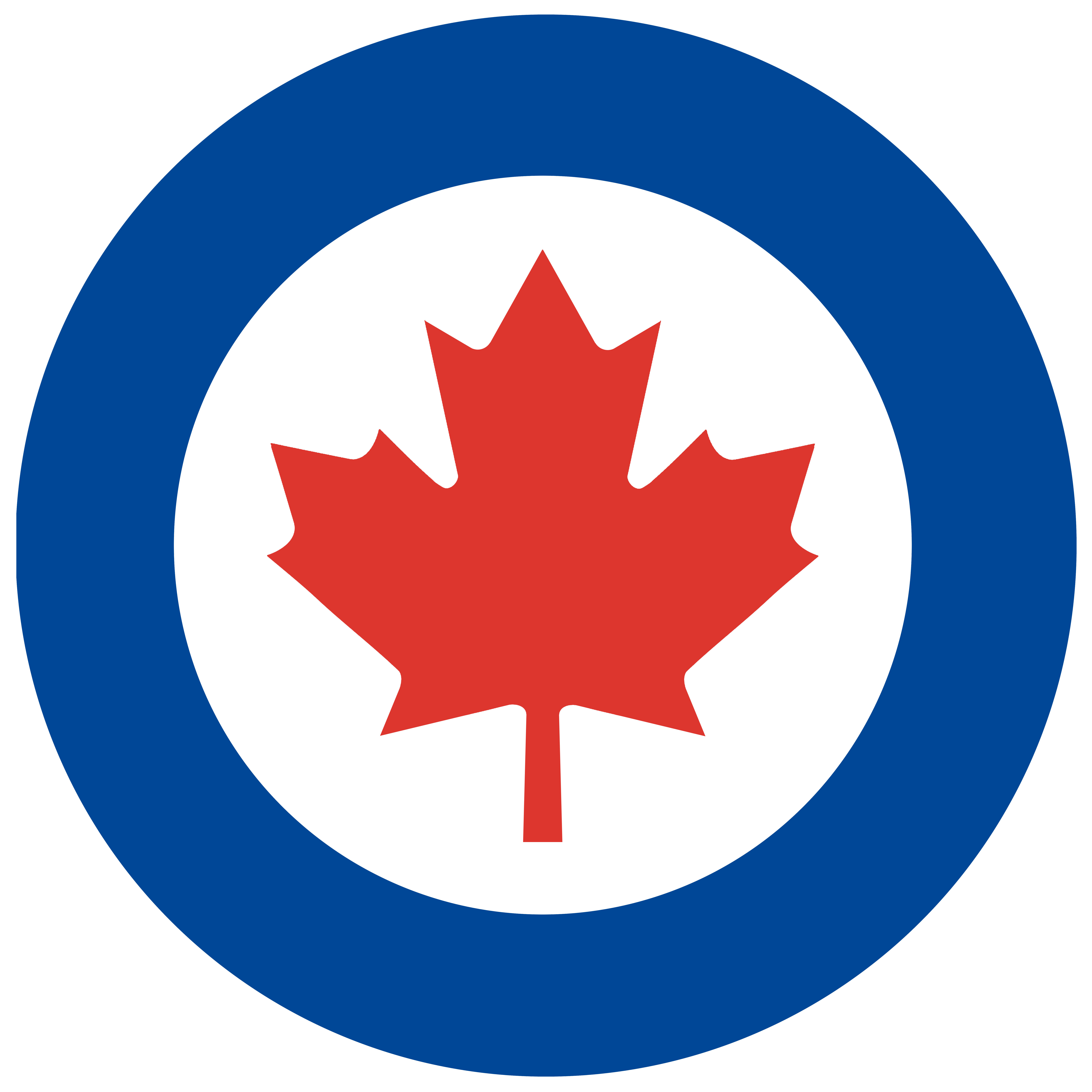 Royal canadian air force welcome to the royal canadian air force biocorpaavc Gallery